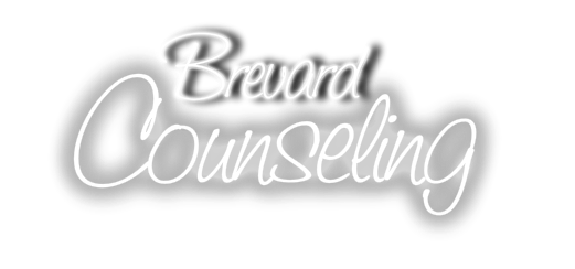 self and relationship therapy llc